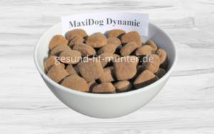 Reico Dynamic – Reico MaxiDog Dynamic – Maxidog Dynamic- Maxidog - MaxiDogVit - MaxiDog Trockenfutter – Maxidogvit Trockenfutter - Maxidog Hundefutter - Maxidogvit Hundefutter - Reico Trockenfutter - Reico Maxidog - Reico Maxidogvit - Reico Hundefutter - bestes Hundetrockenfutter - gutes trockenfutter hunde - bestes hundefutter trocken - MaxiDog Trockenfutter - Reico Trockenfutter - Reico Hundefutter